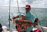 Off Shore Fishing Catch in St Petersburg, FL