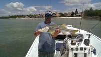snook fishing saint pete Fl fishing charters