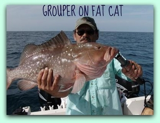 St pete shark fishing charters for Deep sea fishing st petersburg fl